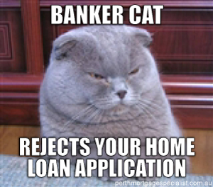 Banker Cat Rejects Your Home Loan Application Meme